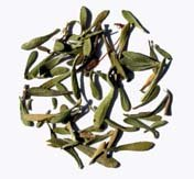 Thyme Leaves Organic 1 Lb