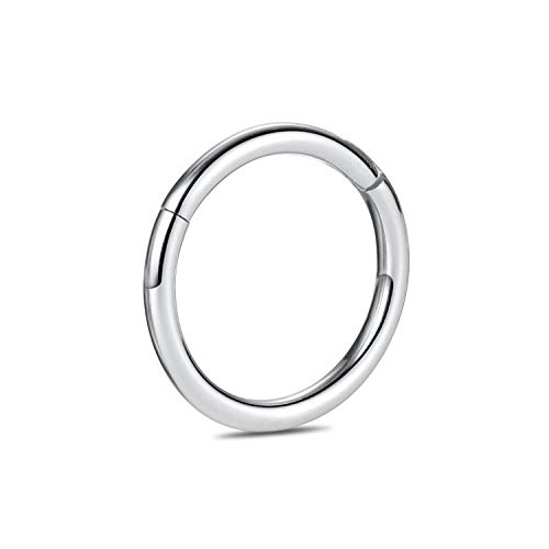 G23 Titanium 16G Hinged Segment Clicker Nose Ring Hoop Cartilage Earrings Body Piercing 8mm Helix Counch Jewelry