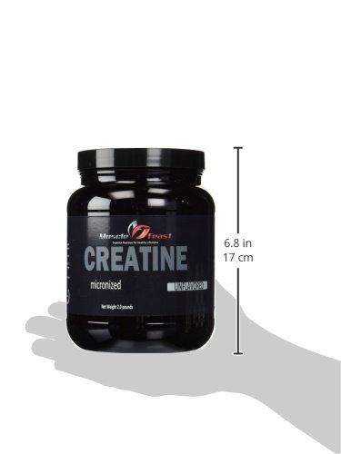Micronized Creatine Powder 2 Pounds