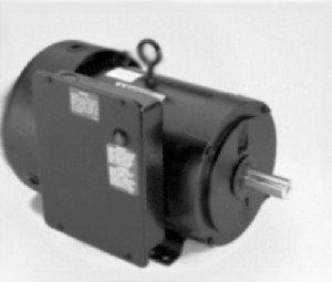 1 10 hp electric motor - 3