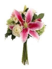 12-Casablanca-LilyRoseSnowball-Bouquet-Rubrum-Cream-Pack-of-4