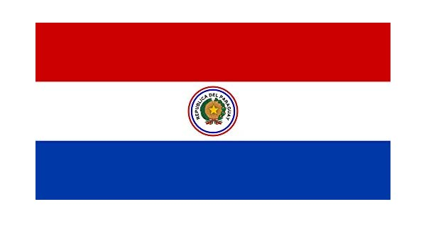 magFlags Bandera Large Paraguay 1954-1988   Paraguay   bandera paisaje   1.35m²   80x160cm: Amazon.es: Hogar