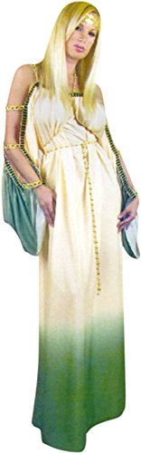 Grecian Princess Costumes (Adult Grecian Princess Costume (Size: X-Large 14-16))
