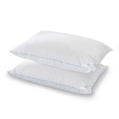 downluxe Set of 2 Down Alternative Bed Pillows - Hotel Collection Plush Pillow Firm Density, Queen Size 20x28