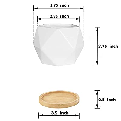Plant Pot, Rosoli 4pcs Ceramics Indoor Planter Garden Pots for Succulents, African Violets, Cactus, Herbs - 3.5 Inch Flower Pots with Drainage Hole and Waterproof Tray (White).: Garden & Outdoor