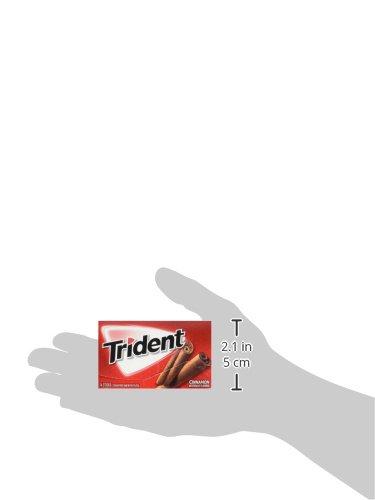 Trident-Sugar-Free-Gum-Cinnamon-14-ct-pack-of-12