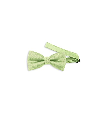 Men's Paragon Adjustable Bow Tie Style YD501 by After Six - Pistachio