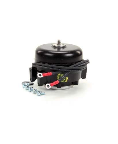 TRUE 800402  Motor 115-volt 60 Hertz