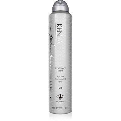Kenra Platinum Finishing Spray - 9