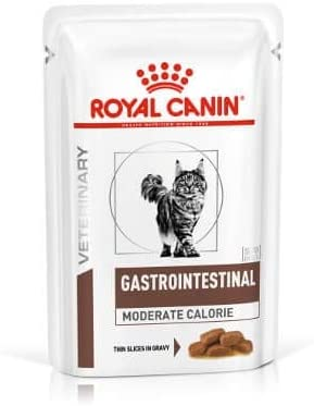 Royal Canin Comida veterinaria de gastrointestinal moderada en calorías para gatos 12x100g: Amazon.es: Productos para mascotas