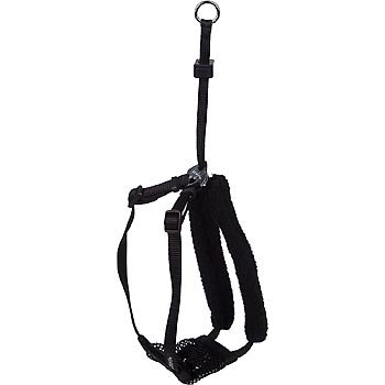 Petco Black Non-Pull Mesh Dog Harness, Medium