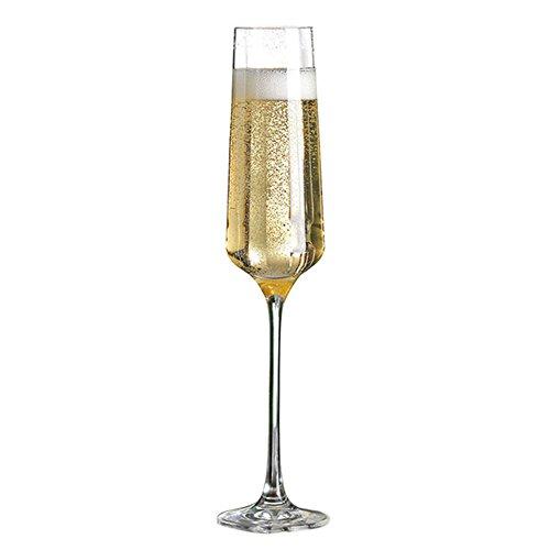 Charisma Transparent Lead-free Champagne Glasses, Set of 4 (Champagne Transparent)
