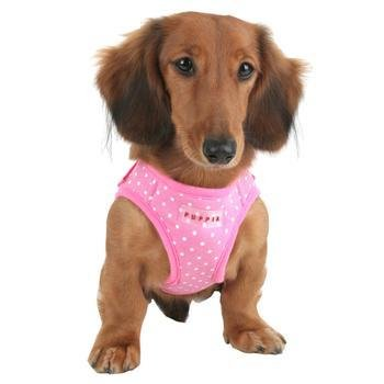 Harness - Dotty B Jacket PINK MD