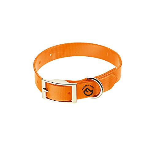 FARM-LAND 90-1-160-005 Basic Dog Collar Signal Orange 55