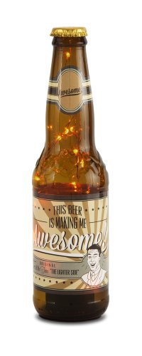 Pavilion Gift Company 22088 Beer All The Time Beer Bottle Lantern, Awesome!