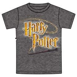 Harry Potter Logo Wand Youth T-Shirt, Dark Gray Heather, Medium (8) (Harry Potter Spells Lightning Bolt T Shirt)