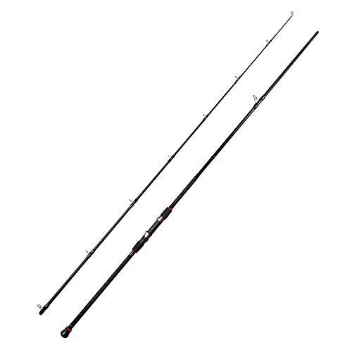 - Fiblink Surf Casting Fishing Rod 2-Piece Graphite Travel Baitcasting Fishing Rod (Length: 10')
