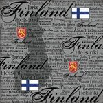 Scrapbook Customs - World Collection - Finland - 12 x 12 Paper - Scratchy