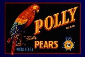 MAGNET San Francisco California Polly Parrot Bird Pears Fruit Crate Magnet Art Print ()
