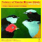Voices of Costa Rican Birds - Caribbean Slope, David Ross and Bret Whitney, 0938027220