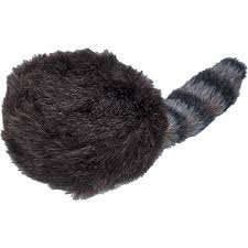 Coonskin Cap Costume (Coon Skin Cap Youth Size)