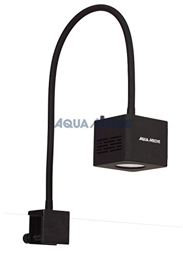 Foco LED para acuario Marino - Qube 50 Aqua Medic: Amazon.es: Productos para mascotas