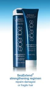 Aquage Seaextend Strengthening - Aquage Sea Extend Strengthening Shampoo 10oz and Conditioner 5oz