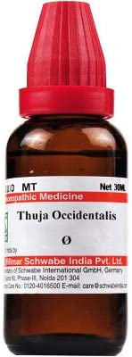 Willmar Schwabe India Homeopathic Thuja Occidentalis Mother Tincture Q (30ml) - by Exportdeals