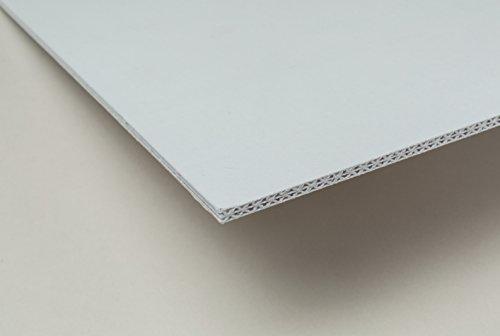 Pacon  Rigid Display Board, White,  20