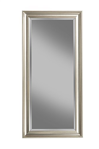 Sandberg Furniture Champagne Silver Full Length Leaner Mirror (Mirrors Silver Long)