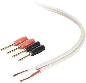 BELKIN AV23002-25-WH Blue Series 18-Gauge Speaker Wire with Pins (25 ft, - Blue Speaker Gauge Series 18
