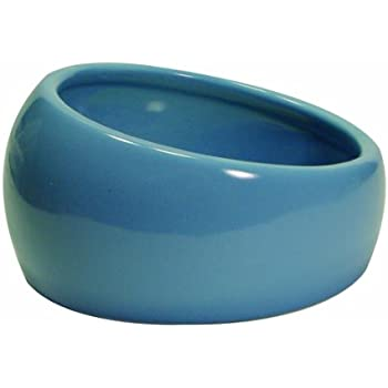 Living World Ergonomic Dish, Blue, Small