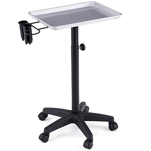 Giantex Mayo Rolling Aluminum Tray Cart, Salon Instrument Trolley Stand with 5 Casters and Accessory Caddy, Large Tray for More Storage Space (21x21x38), Beauty Tool Trolley Service Cart