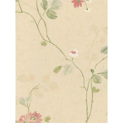 York Wallcoverings CG5609 Willow Woods Chrysanthemum Trail Wallpaper, Cream