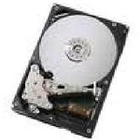43W7506 300GB Hot Swap 15K SAS HDD