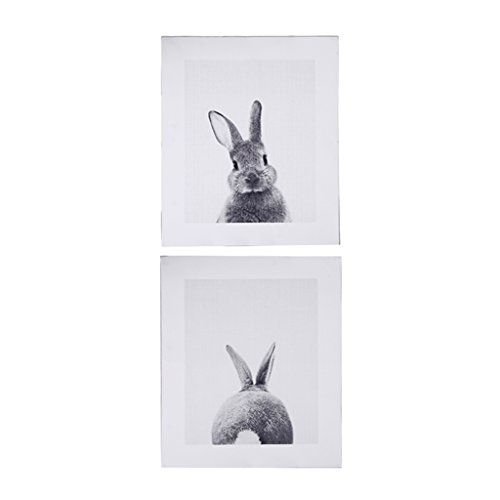 Cuawan Rabbit Tail Canvas Art Print Poster Bunny Canvas Painting Nordic Wall Decor (19.68in ()