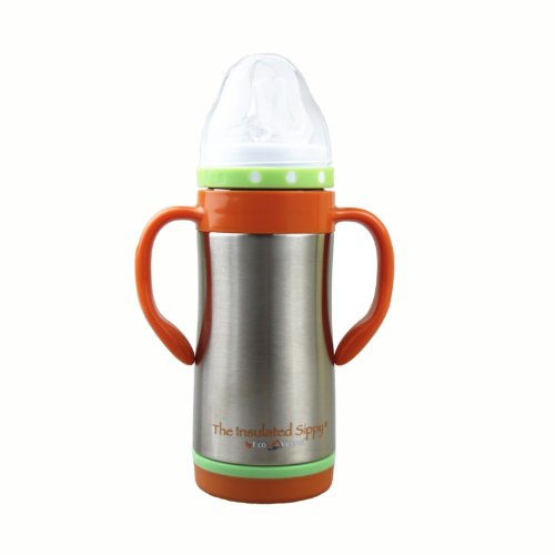 10 oz. Kids Vacuum Sippy Thermos Bottle Color: Silver Express