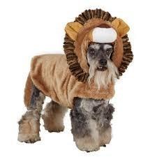 Lion Dog Costume Petsmart (Top Paw Brown Lion Pet Costume Xs)