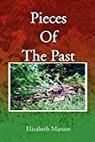 img - for Pieces of the Past book / textbook / text book