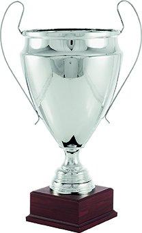 Trofeo réplica champions league GRANDE trofeos personalizados copas: Amazon.es: Hogar