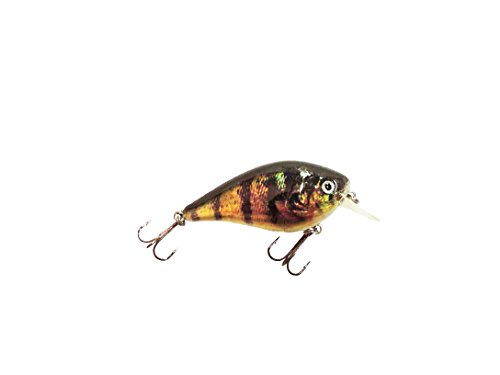 Crankbait Perch (Chasing Trophy Fish Lures Square Bill Perch CrankBait, Black/Yellow)