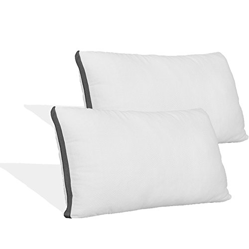 (Coop Home Goods - Lulltra Hypoallergenic Zippered Pillow Protectors - Standard - 2 Pack - White)