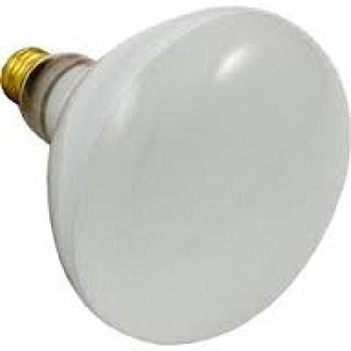 Pool Flood Light Bulbs - 9