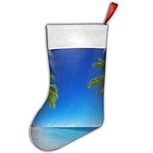 31YkR8mqaFL._SS300_ 100+ Beach Themed Christmas Stockings