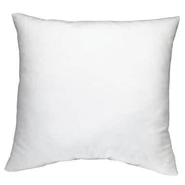 DreamHome Square 18inch L X 18inch W Poly Pillow Insert, White