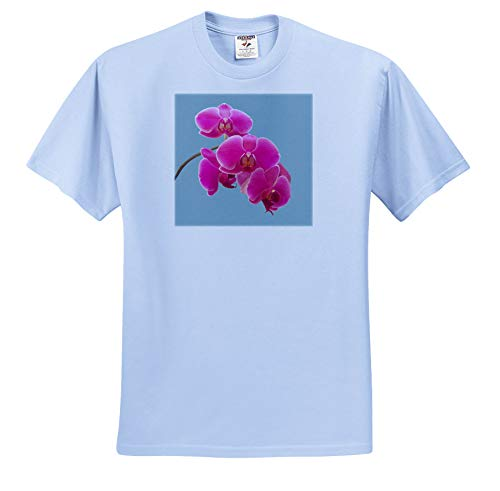 Orchid Photograph - 3dRose Natalie Paskell - Flora and Fauna - Pink Orchids Photograph in Paint Effect. - T-Shirts - Toddler Light-Blue-T-Shirt (3T) (ts_293377_64)