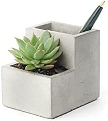 Kikkerland Small Concrete Desktop Planter