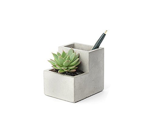 Kikkerland Concrete Desktop Planter, Small (PL02-S)