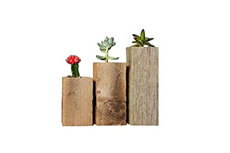 Succulent Planter Box Set Made from Reclaimed Wood - Perfect for Real or  Faux Succulent Plants (Set of 3, Rustic)