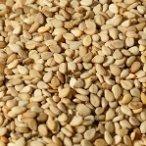 Sesame Seeds, White, Hulled, Organic, 25# Bulk